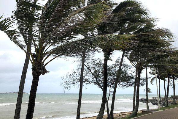 Ex Oma à Nouméa, vent fort, 26 février