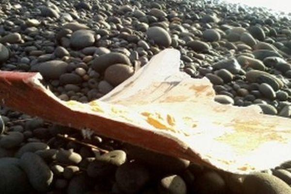 02-Débris retrouvé à Rivière des Roches à Saint-Benoît (MH370 ou bateau ?) 20160621