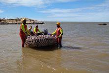 Les secours sont intervenus mardi en mer pour évacuer d'un rocher trois chiens de compagnie piégés depuis quelques heures.