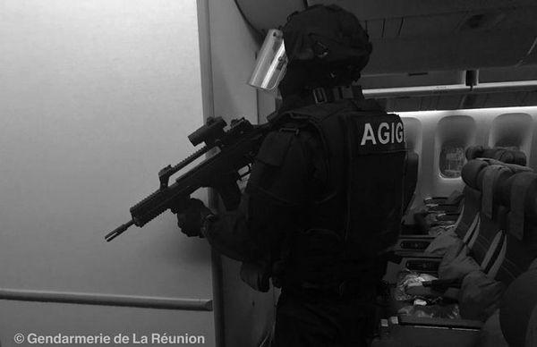 Gendarme dans l'avion simulation 2018
