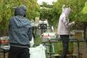 Australie : les backpackers exploités dans les fermes