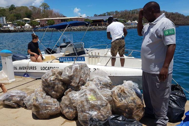 L'îlot Mbouzi, un site classé, menacé par la pollution