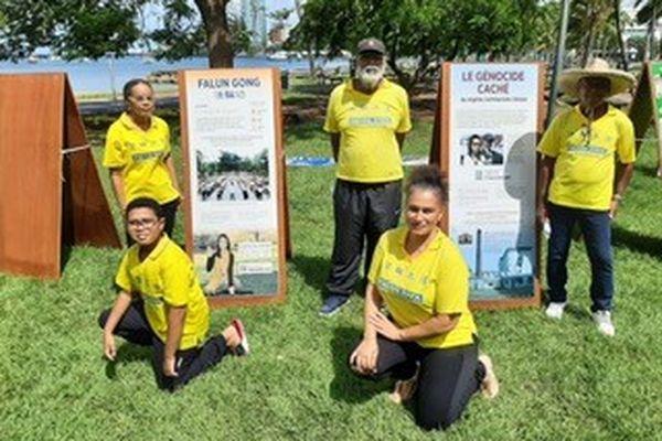Association Falun Data
