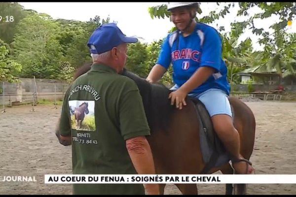 Au cœur du fenua : les malades murmurent aux oreilles des chevaux