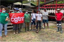 Les grévistes CGTM de l'exploitation bananière de Bamaryl au François (7 juin 2021).