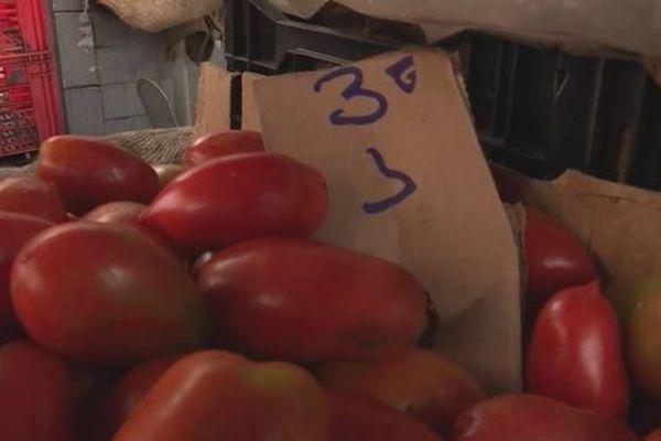 Prix tomates