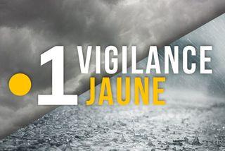 Vigilance Jaune (Martinique)