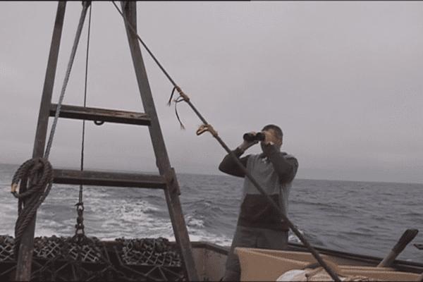 Les habitants de Miquelon-Langlade sont mobilisés pour tenter de localiser l'embarcation disparue