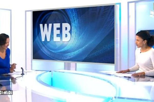 chronique web 10-01