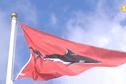 Le pronostic vital du body boarder attaqué par un requin à La Réunion n'est plus engagé