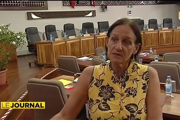 Le chikungunya interpelle les conseillers de l'Assemblée