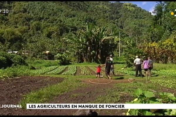 Agriculture : état des lieux d'un secteur en difficulté
