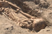 Des squelettes d'adultes retrouvés à l'ancien cimetière du Bagne.