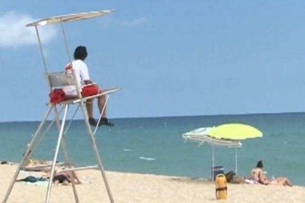 Alerte aux requins en Espagne, six plages fermées