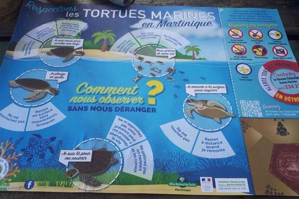 set de table tortue