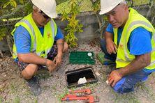 Les ouvriers en train de poser un compteur d'eau. L'objectif est de réduire le gaspillage.