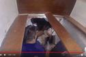 Saisie de cocaïne aux Marquises : la vidéo des douanes