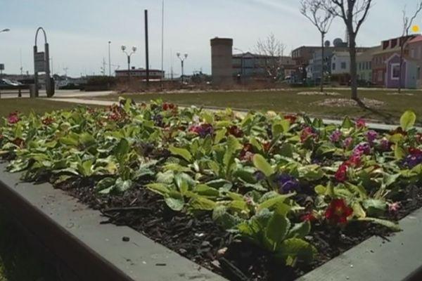 La ville de Saint-Pierre aux couleurs du printemps