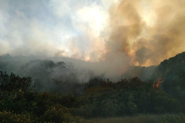 Incendie au Maïdo