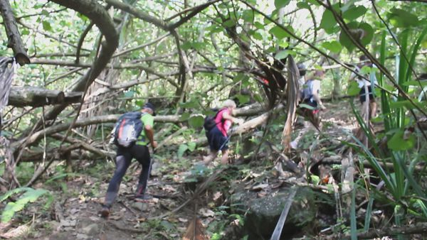 Ua Pou : les guides de randonnée triés sur le volet