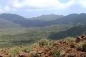 Fuite d'acide à Goro : les associations écologistes demandent 700 millions de francs CFP à Vale