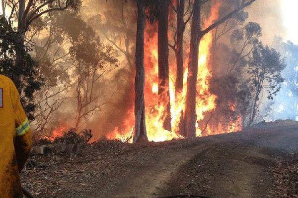Tasmanie : pompiers volontaires