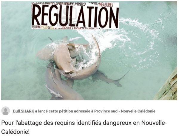 Visuel de la pétition pour l'abattage de requins.