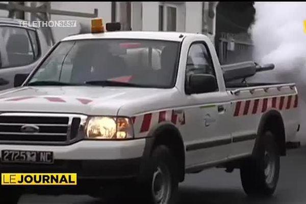 L'épidémie de chikungunya menace la Nouvelle-Calédonie