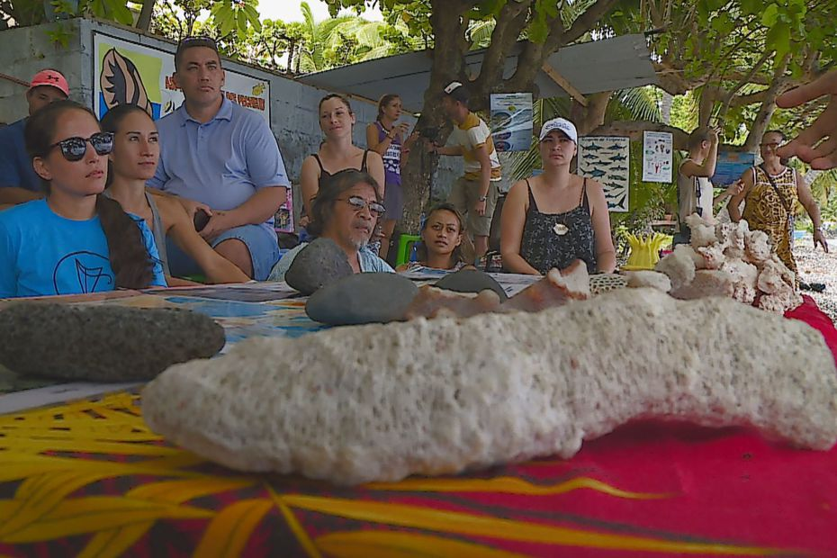 Ecologie : des petits gestes pour une humanité durable - Polynésie la 1ère