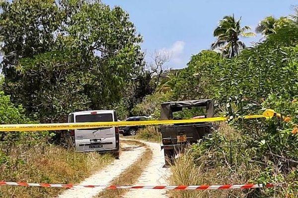 Lifou : site balisé du crash du monomoteur