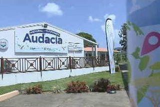AUDACIA 1