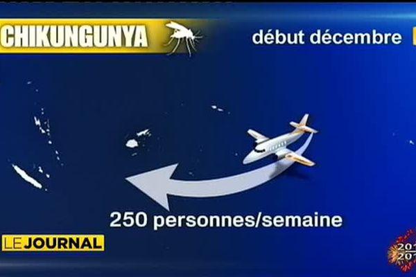 Le chikungounia s'exporte et gagne du terrain en nouvelle Calédonie