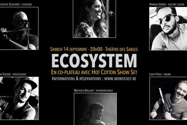 affiche concert ECOSYSTEM