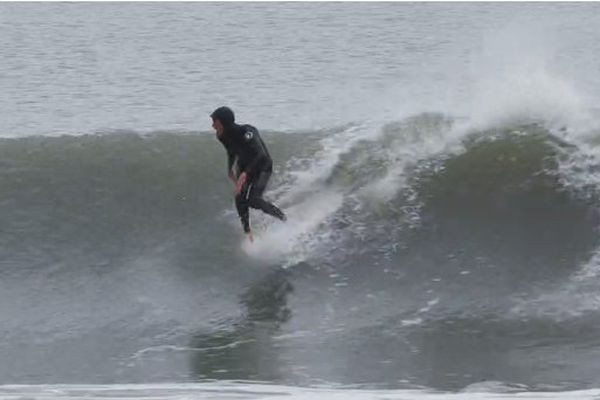 surf sans board 2