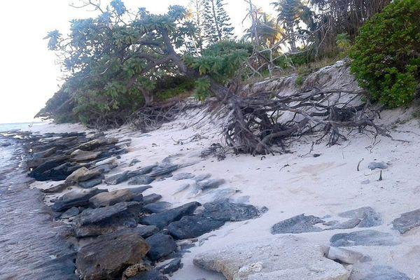 Plage de Qaepapale à Tiga, où des boulettes d'hydrocarbure ont été trouvées (février 2018)