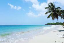 Plage des salines (Sainte-Anne, en Martinique)