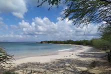Une plage déserte à Sainte-Anne.