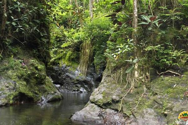 Vallée de la Fautaua