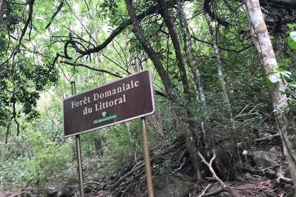 La trace du Petit Malendure