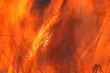 Image d'archives