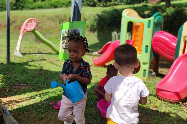Semaine du goût à Cayenne : le jardin est une activité de groupe