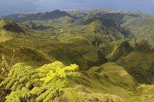Le versant nord-ouest de la montagne Pelée (Martinique).