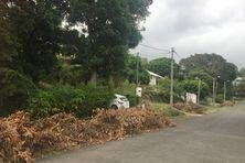 Des déchets verts devant des habitations au Mont-Dore