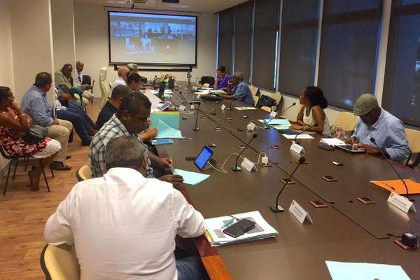 Coronavirus, assemblée de province îles par visioconférence, 24 avril 2020