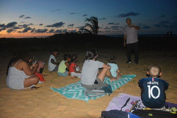Tortues marines : une année exceptionnelle pour les pontes sur des plages de l'île de Cayenne