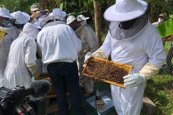 Première ruche au lycée agricole de Vaimoana