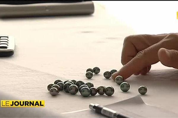 Importantes ventes aux enchères de perles à Papeete