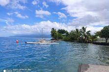 Le sud de l'île et les bords de mer sont actuellement très prisés.