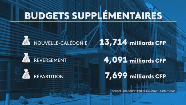 Budgets supplémentaires