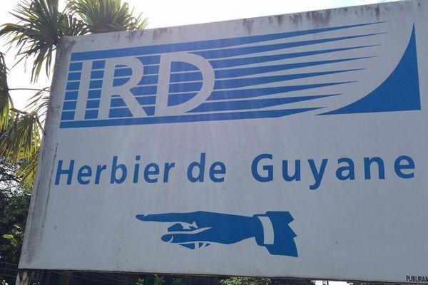 Herbier de Guyane